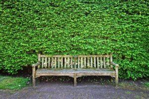 Groene aanslag tuinmeubels verwijderen
