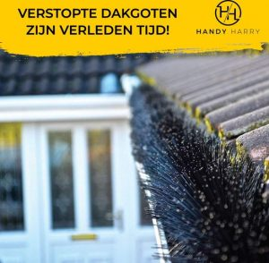 Dakgoot beschermen tegen bladeren