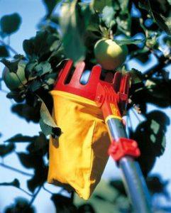 Fruitplukker op steel