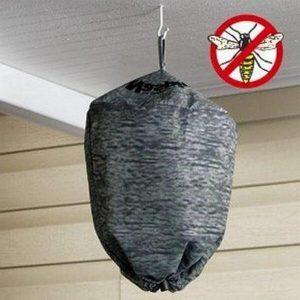 Druiven beschermen tegen wespen